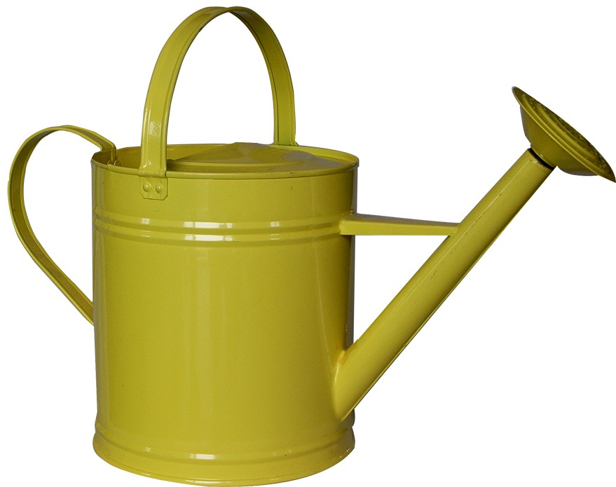 Watering Can 9L...